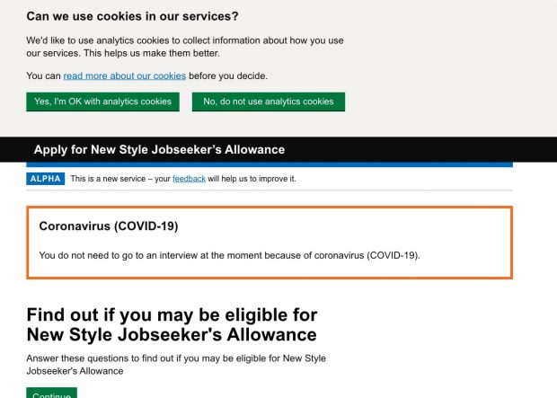 Screenshot of 'Apply for New Style Jobseeker's Allowance' webpage, showing the cookie consent banner